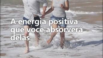 Vídeo Muito Interessante Sobre A Importância De Conviver Com Pessoas Positivas!