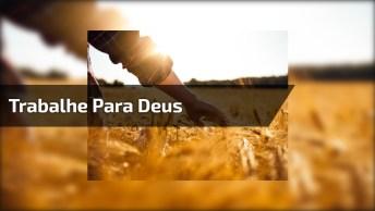 A Frase Que Comoveu O Brasil, O Que Você Achou Dessas Palavras?
