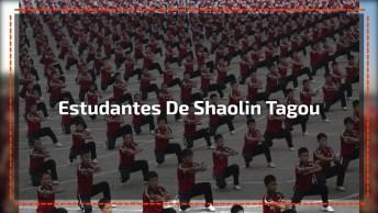 Apresentação Incrível Dos Estudantes De Shaolin Tagou, Perfeito, Magnifico!