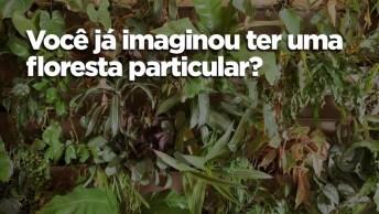 Bióloga Cultiva Mais De 500 Plantas Em Seu Apartamento, Confira!