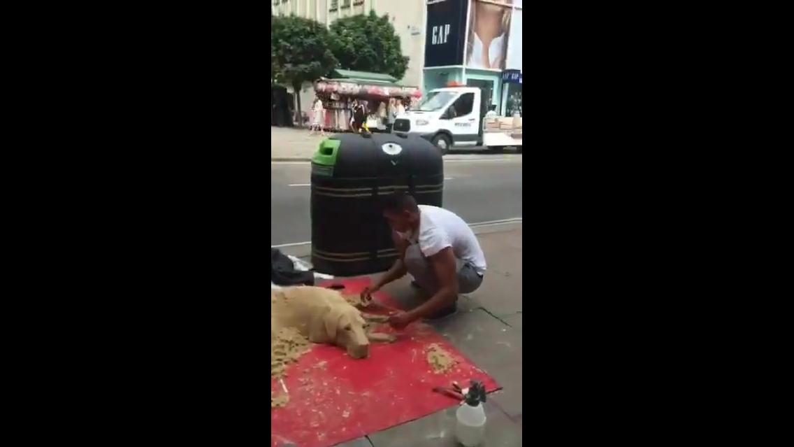 Cachorro feito de areia