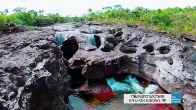 Conheça O Rio Rainbow-River 'Rio Arco-Iris', Um Lugar Fantástico Na Florida!