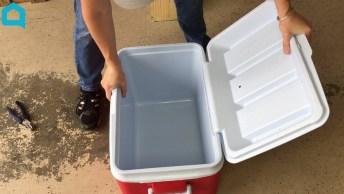 Cooler Com Caixa Térmica De Plástico, Uma Ideia Muito Interessante!