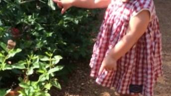 Crianças São Fantástica, Veja Só O Encanto Dessa Garotinha Com A Butterfly!