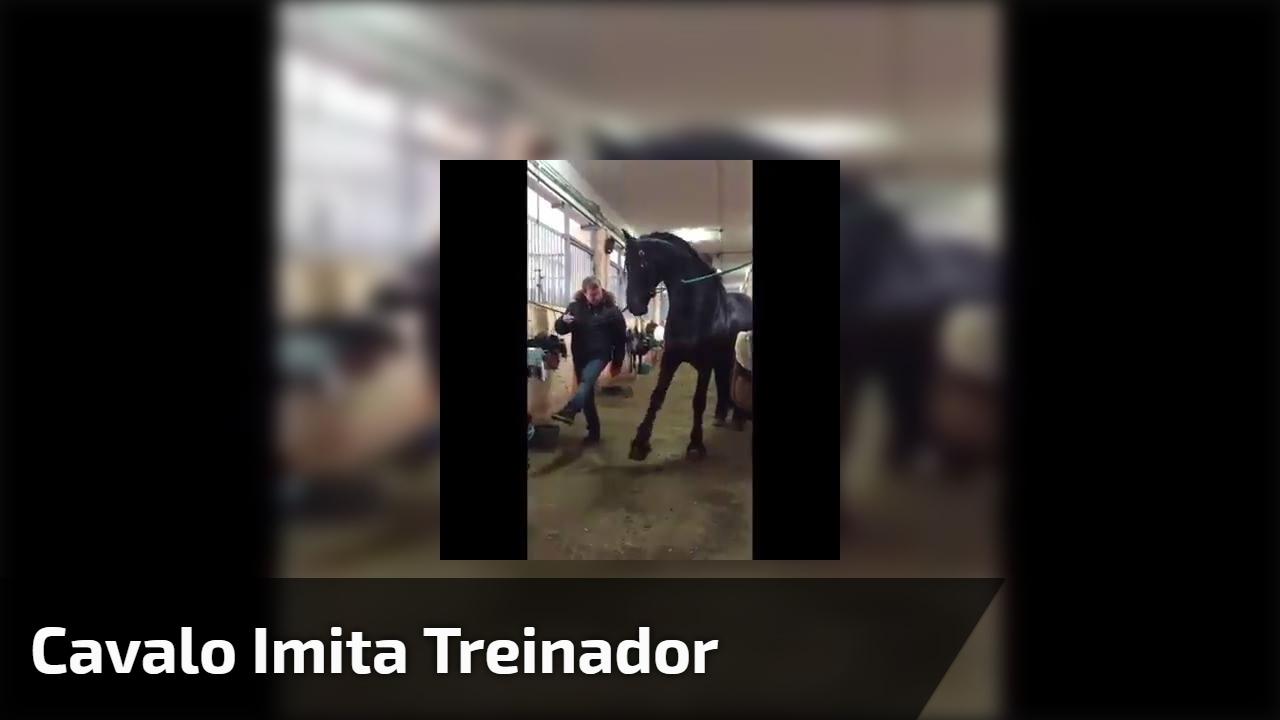 Cavalo imita treinador