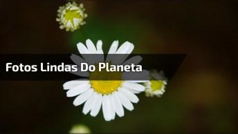 Fotos Lindas De Nosso Planeta, Um Lugar Mais Belo Que O Outro!