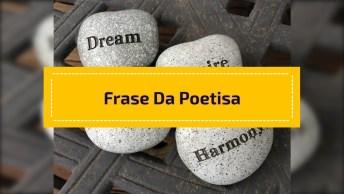 Frase Da Poetisa Portuguesa Sophia De M. B. Andresen, Confira!
