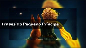 Frases Mais Lindas Do Pequeno Príncipe, Compartilhe No Facebook!