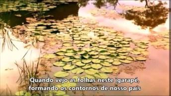 Lindo Poema 'Ruínas' De Florbela Espanca, Vale A Pena Conferir!