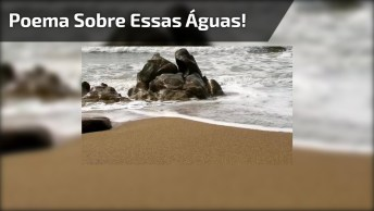 Mar Sonoro De Sophia De Mello, Um Lindo Poema Sobre Essas Águas!