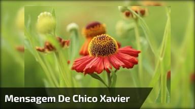 Mensagem De Chico Xavier, Tudo Passa, Compartilhe No Facebook!