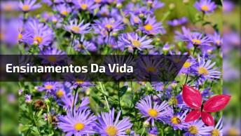 Mensagem Linda Para Compartilhar Com Os Amigos E Amigas Do Facebook!