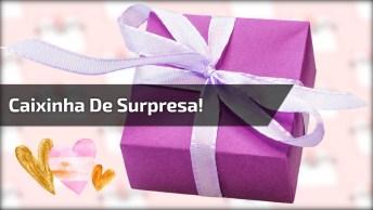 Moça Ganha Um Presente De Aniversário, Da Uma Olhada Nesta Caixa, Eu Quero!