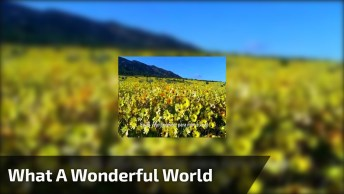 Musica 'What A Wonderful World' De Louis Armstrong, Sendo Recitada, Confira!
