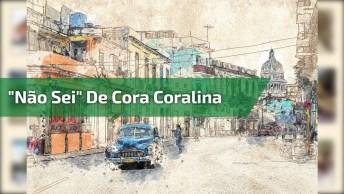 Não Sei De Cora Coralina Com Música Instrumental De Fundo, Lindo!