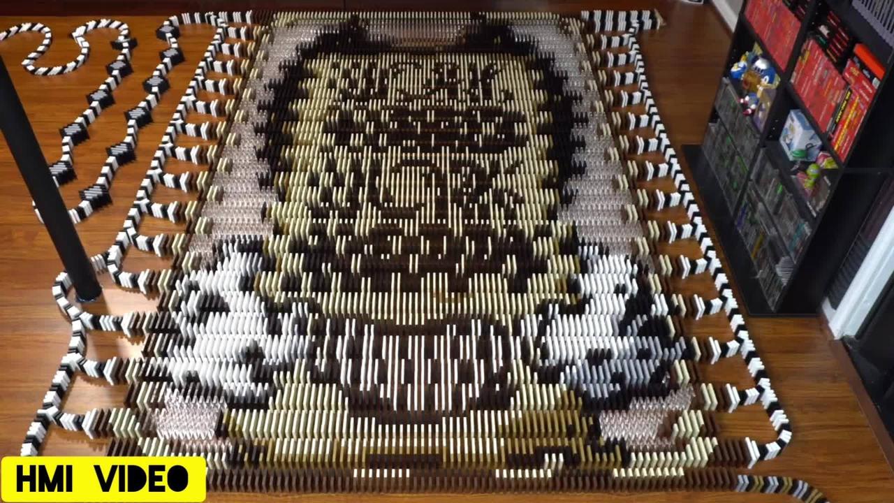 O video de dominós enfileirados mais legal e completo para assistir