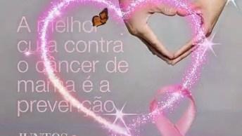 Outubro Rosa, A Melhor Cura Contra O Câncer De Mama É A Prevenção!