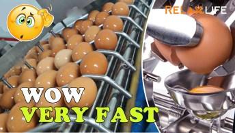 Processo De Quebrar Ovos Em Fábrica, Muito Inteligente E Legal!