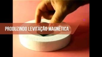 Produzindo Levitação Magnética, Uma Experiencia Incrível, Confira!