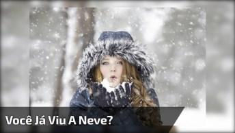 Só Na Onde Neva Você Vai Ver Cenas Como Essas Do Vídeo!