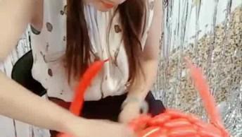 Trabalhos Feitos Com Balões De Festa, Todos São Bem Legais!