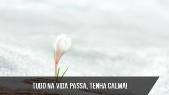 Tudo Na Vida É Passageiro, Mantenha Seu Coração Calmo!