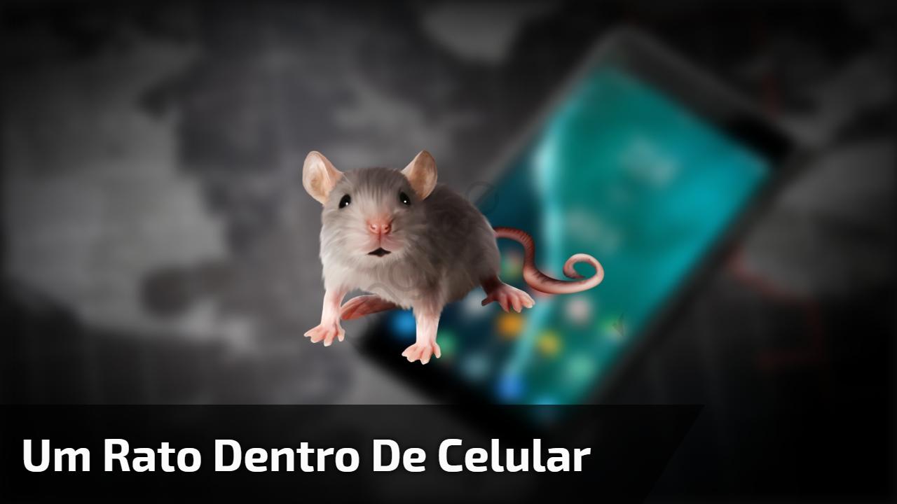 Um rato dentro de celular