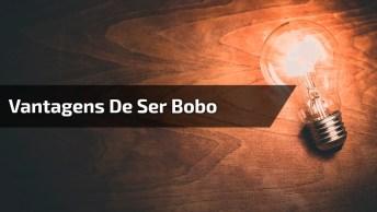 'Vantagens De Ser Bobo' Por Aracy Balabanian De Clarice Lispector!