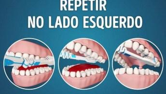 Veja A Melhor Maneira De Se Escovar Os Dentes, Vale A Pena Conferir!