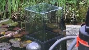Vídeo Com Aquário Invertido Dentro De Laguinho, Simplesmente Fantastico!