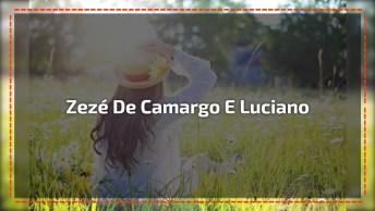 Vídeo Com Imagens De Flores, Ao Som De Zezé De Camargo E Luciano 'Quem É Ele?'.