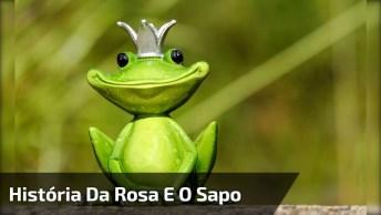 Vídeo Com Uma História Muito Legal Da Rosa E O Sapo, Confira!