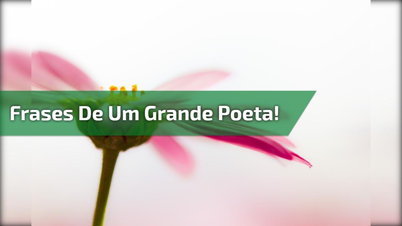 Frases de um grande poeta!