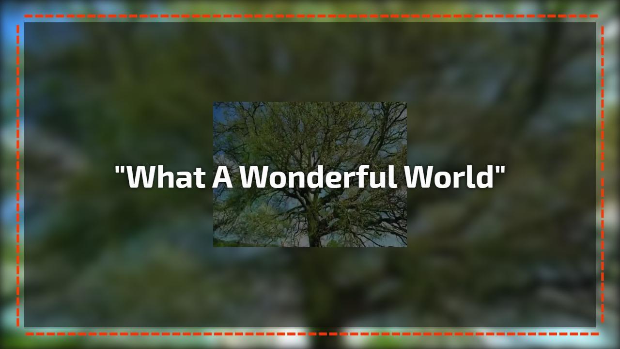 """What a Wonderful World"""