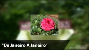 Vídeo Com Linda Música 'De Janeiro A Janeiro' De Roberta Campos!