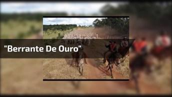 Vídeo Editado Da Música 'Berrante De Ouro' Do Grande Cantor Sérgio Reis!