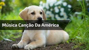 Vídeo Lindo Com Música 'Canção Da América' Com Imagens Do Melhor Amigo Do Homem!