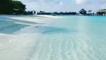 Águas Cristalinas Das Parais Das Ilhas De Maldivas, Um Pedacinho Do Paraíso!