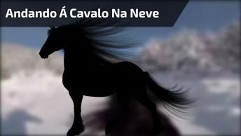 Andando Á Cavalo Com Uma Linda Paisagem Cheia De Neve, Veja Que Lindo!
