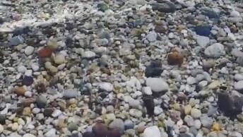 As Águas Mais Limpa Que Verá Hoje. Que Paraíso, Confira!