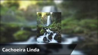 Cachoeira Linda, Com Sons Maravilhosas De Nossa Fantástica Natureza!