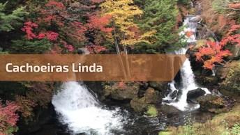 Cachoeiras Com Lindas Flores Coloridas Em Volta, Um Lugar Lindo Para Relaxar!