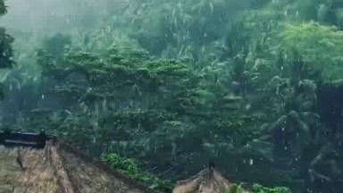 Casa Com Piscina Com Borda Infinita Rodeada Por Natureza A Sua Volta!