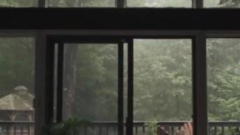 Casa Com Sacada Com Paisagem Natural Fantástica, Veja Que Lindo!