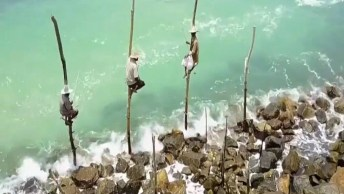Conheça Um Pouquinho De Sri Lanka Um Paraíso Na Terra, Confira!