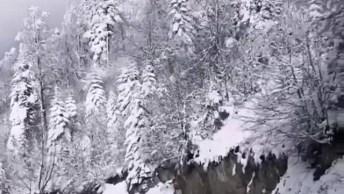 Estrada Com Montanhas E Arvores Cobertas De Neve, Veja Que Imagens Lindas!