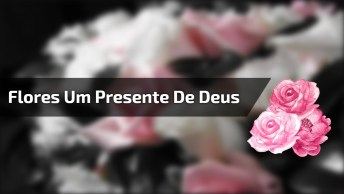 Flores, Um Presente De Deus Para Nós, Vamos Cuidar Da Natureza!