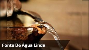 Fonte De Água Linda, Cercada De Natureza, Uma Lindíssima Inspiração!