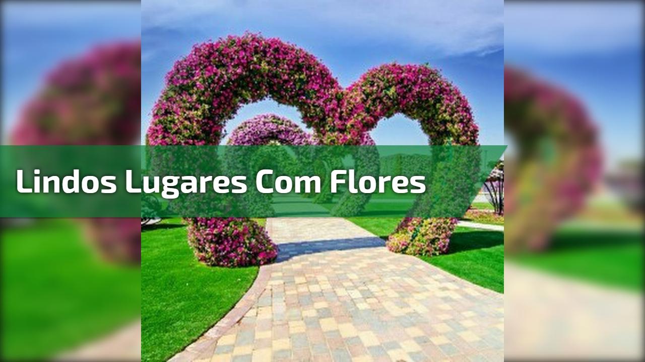Lindos lugares com flores
