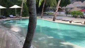 Hotel Com Piscina A Beira Mar Nas Filipinas, Veja Que Lugar Lindo!